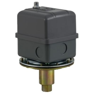 Square D - Schneider Electric 9016GVG1J09 Schneider Electric / Square D 9016GVG1J09 Adjustable Scale Vacuum Switch; 10 Amp, 600 Volt, DPST, Contacts Open On Increasing Vacuum, Diaphragm Actuator