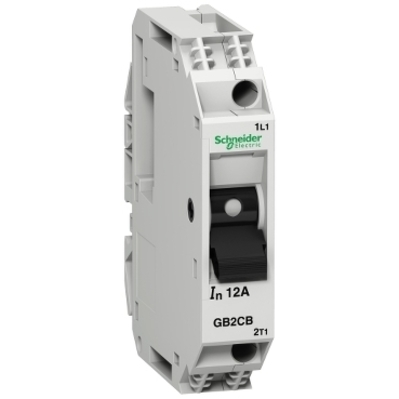 Square D - Schneider Electric GB2CB14 Square D GB2CB14 Thermal Magnetic Circuit Breaker, 300 VAC, 8 A, 50 kA, 1-Pole